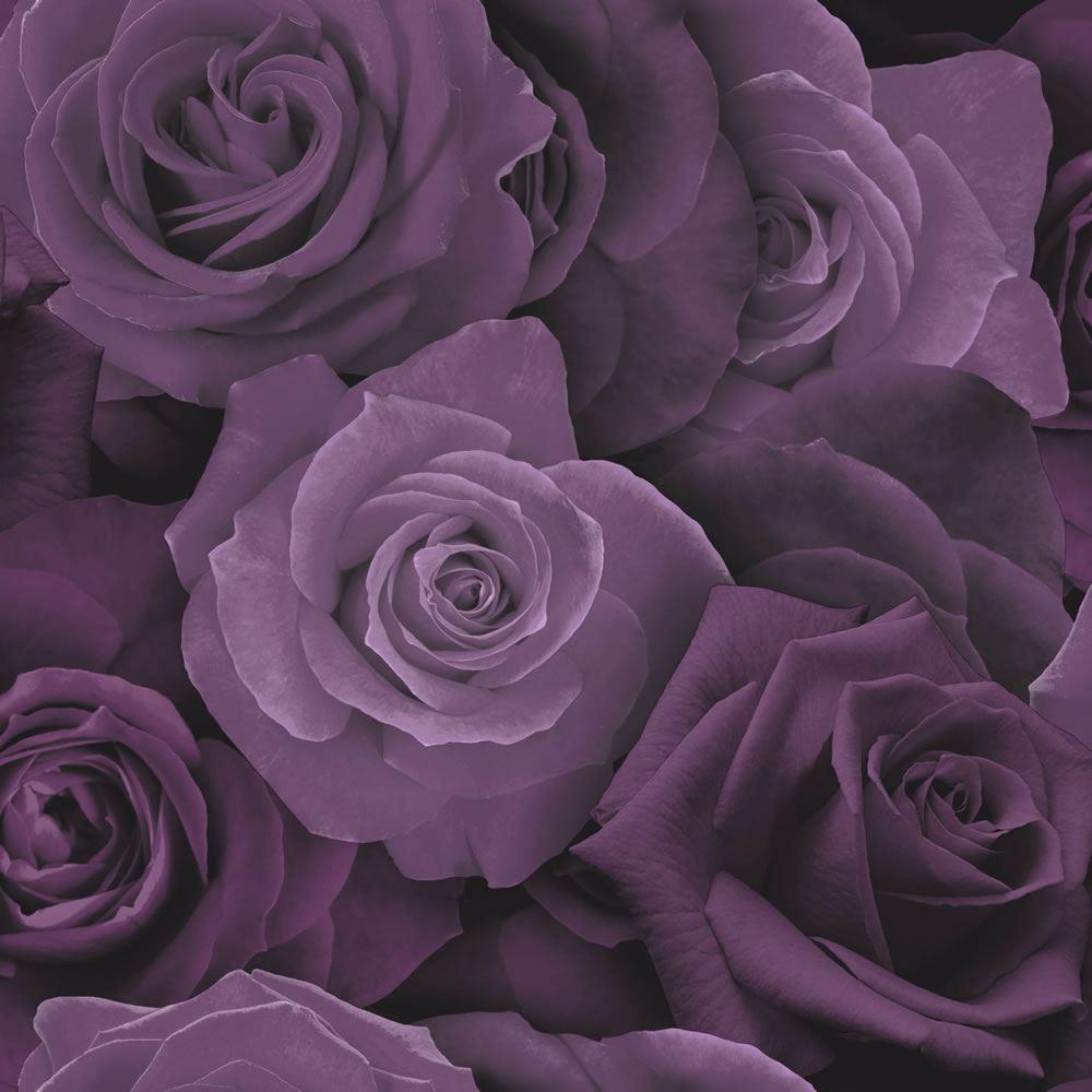 Purple Roses Wallpaper 3D Effect ...