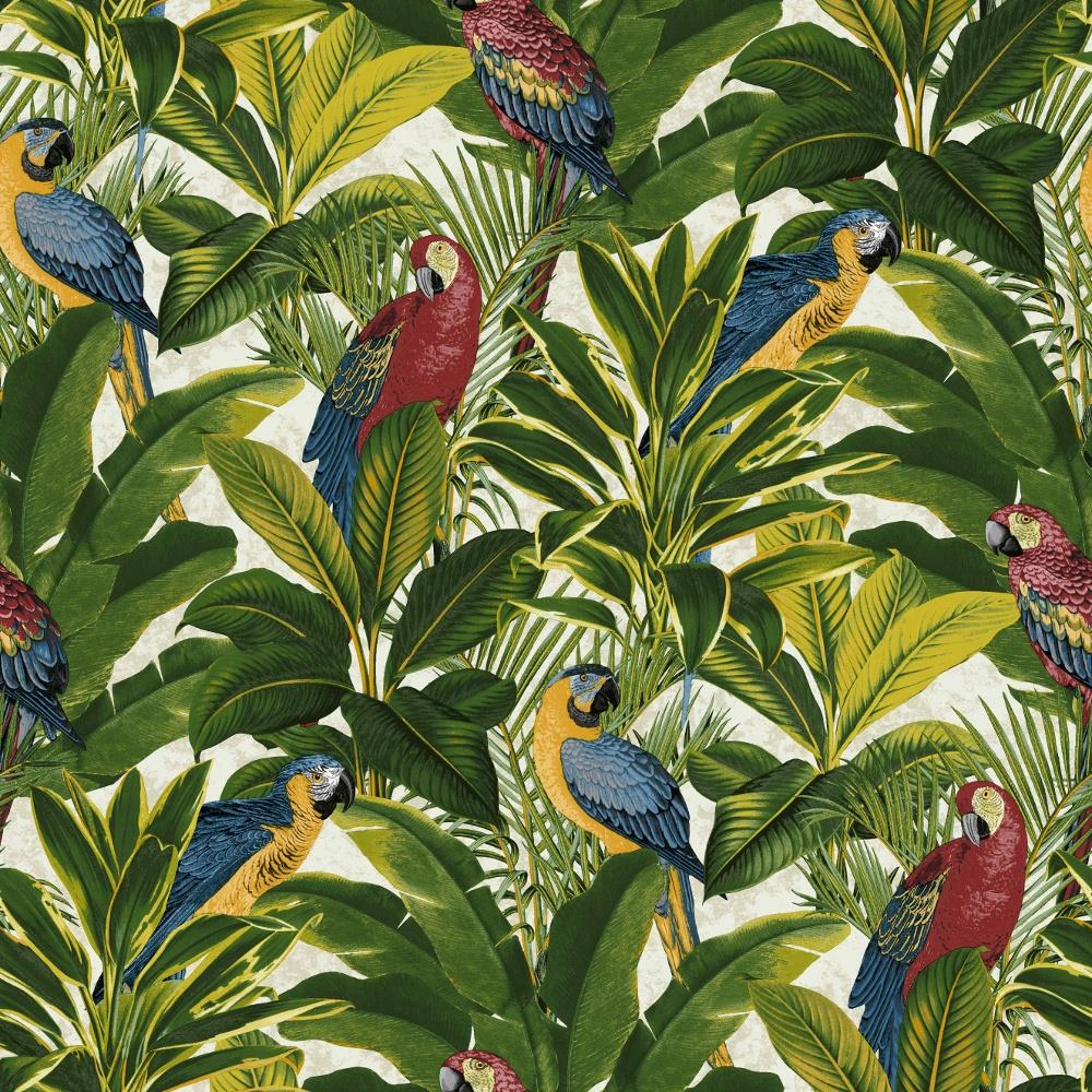 Ideco Exotic Bird Parrot Tropical Leaves Wallpaper Floral Red Blue Yellow Green Ebay Download all photos and use them even for commercial projects. details about ideco exotic bird parrot tropical leaves wallpaper floral red blue yellow green