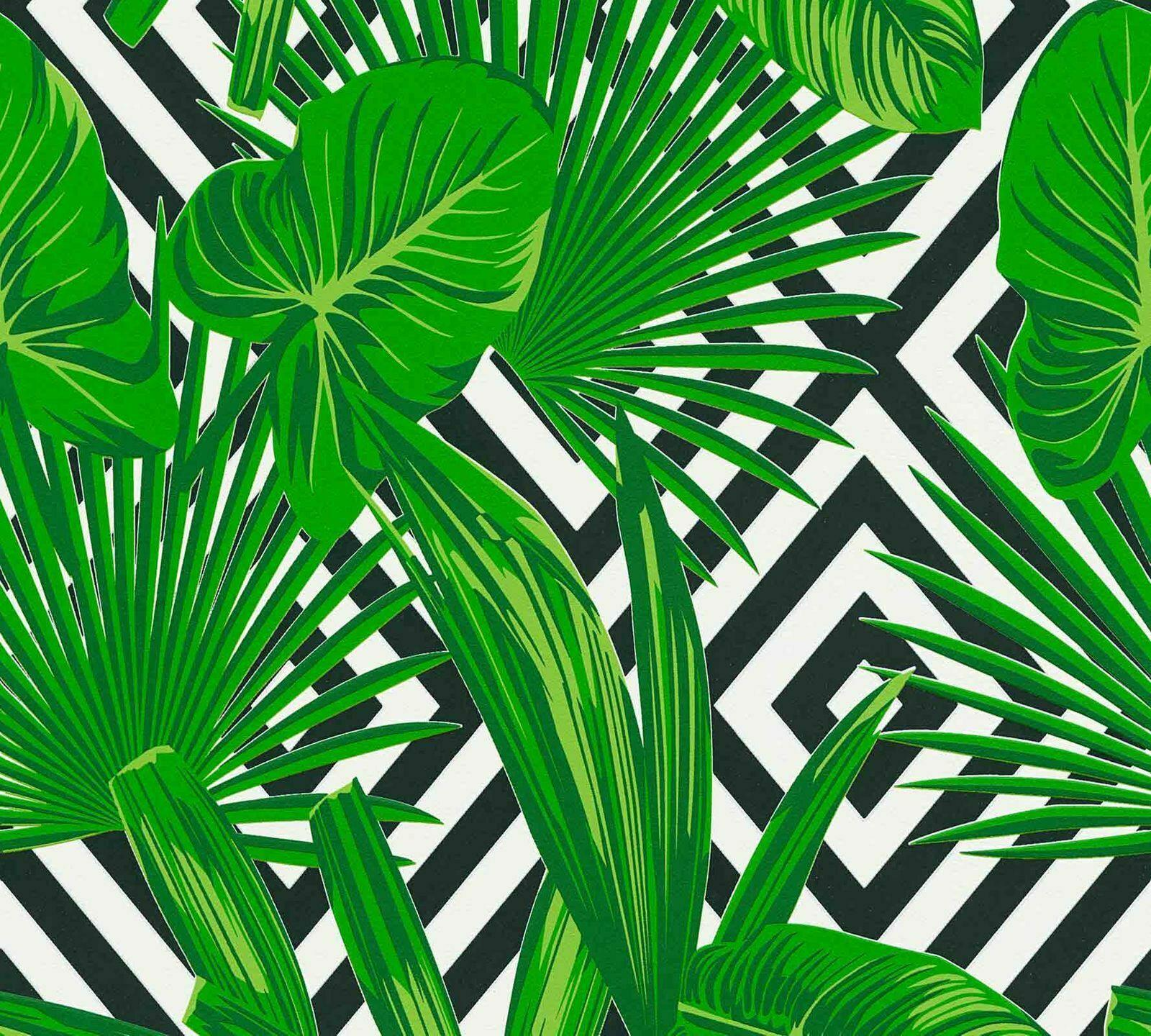 Tropical Leaf Wallpaper Leaves Diamond Geometric Green Black White Paste Wall Ebay The palm leaves on this removable wallpaper will have you dreaming about sun and sand in no time. details about tropical leaf wallpaper leaves diamond geometric green black white paste wall