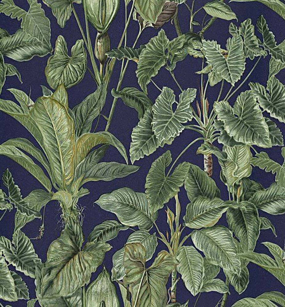 Paradiso Tropical Leaves Pattern Wallpaper Jungle Leaf Forest Non Woven Vinyl Ebay This is the continuous area formed by the branches and leaves of most of. details about paradiso tropical leaves pattern wallpaper jungle leaf forest non woven vinyl