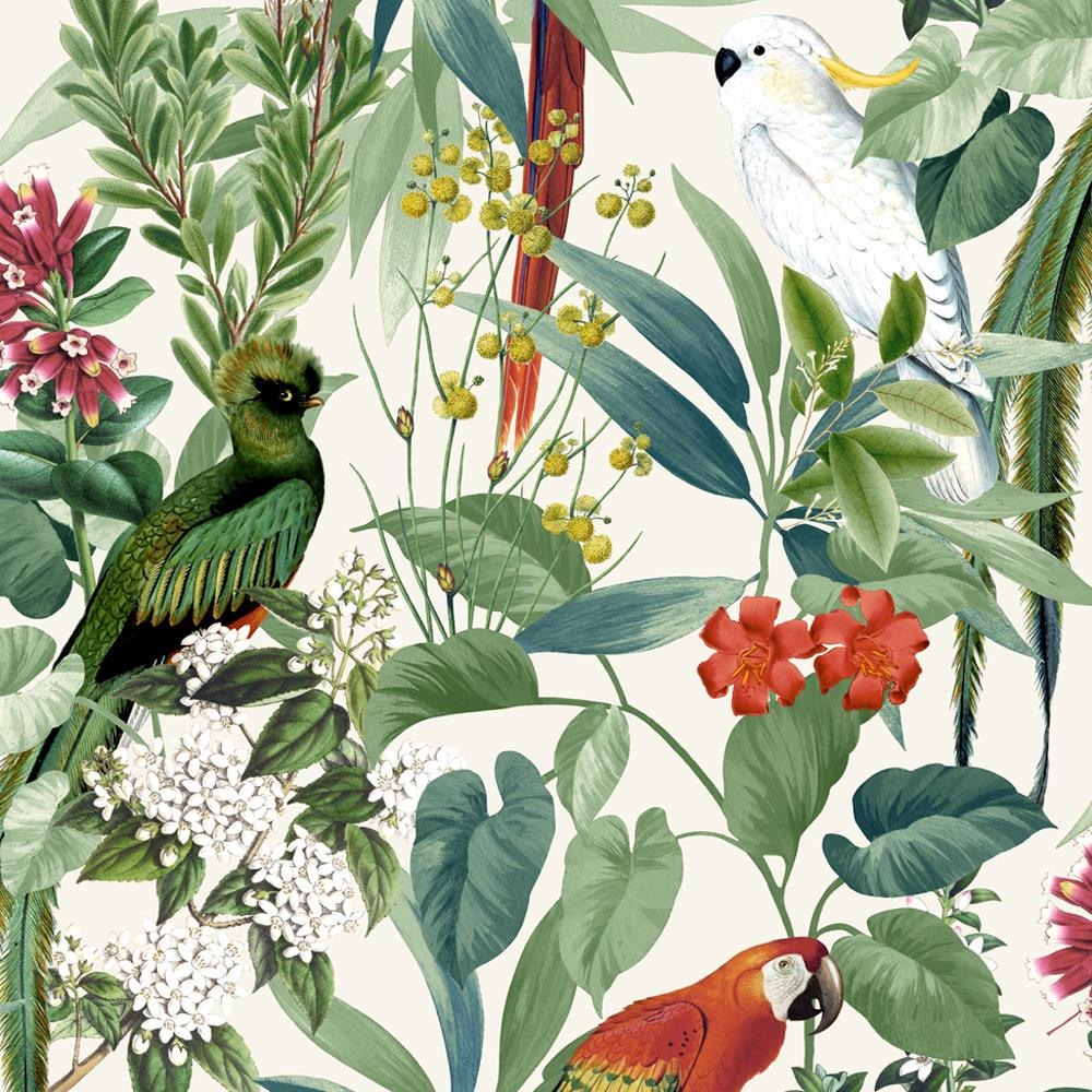 Jungle Birds Wallpaper Tropical Parrots Floral Tree Green White