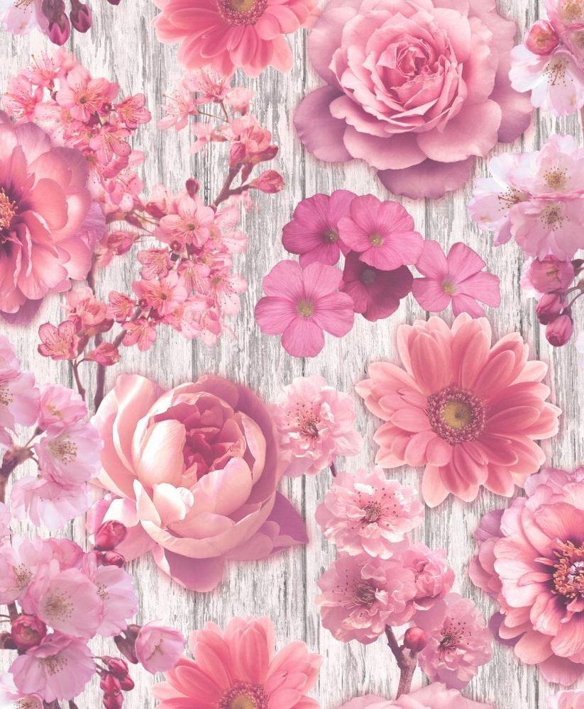Pink Flowers Wallpaper: Pink Rose Petal Wallpaper Flowers Floral Wood Effect