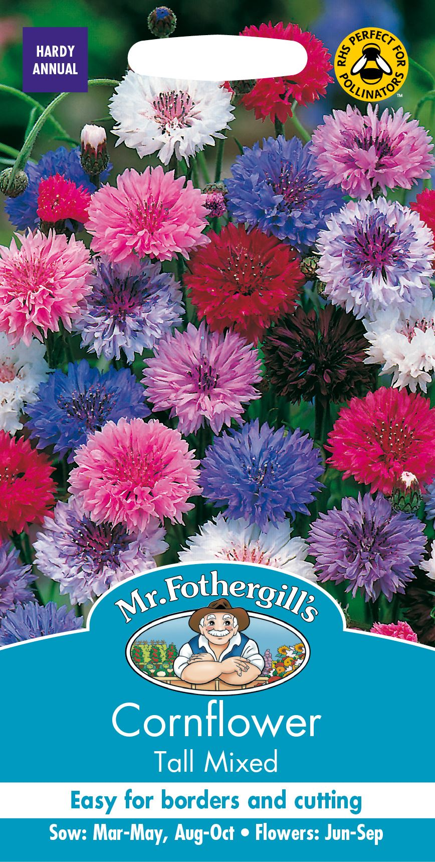 Onorevole Fothergills-pacchetto pittorico-Fiore-Fiordaliso Polka Dot 500 semi