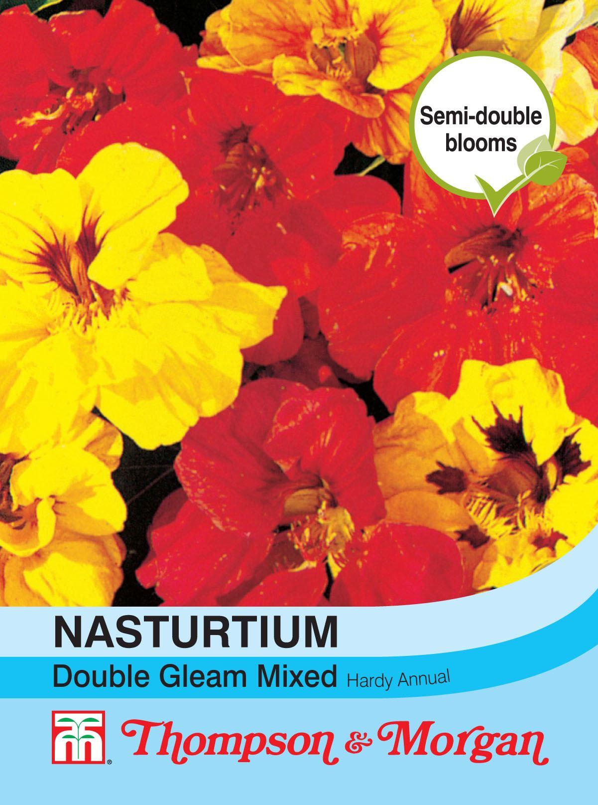 Nasturtium Climbing Mixed Thompson /& Morgan 40 Seed Flowers