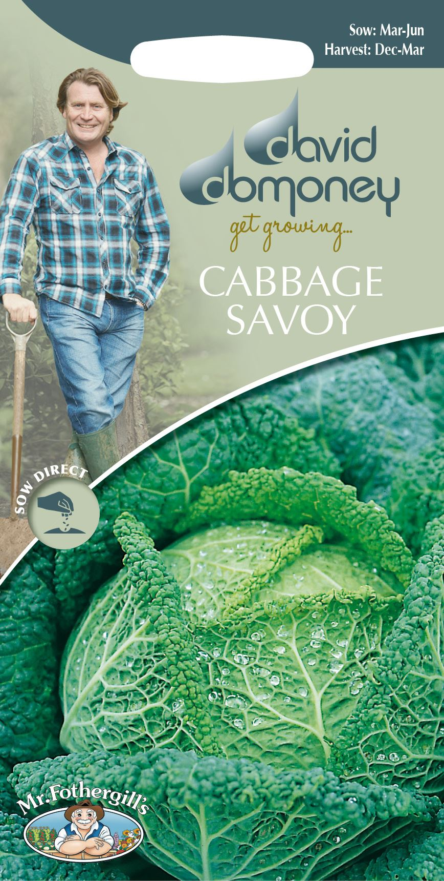 Cabbage - 400 Seeds Ormskirk 1 Johnsons Vegetable Savoy Late
