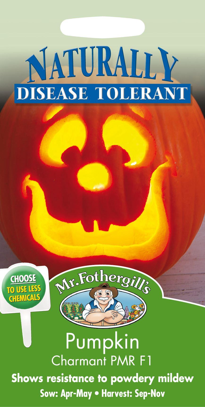 RHS Cucumber Emilie F1-10 Seeds Mr Fothergills Vegetable