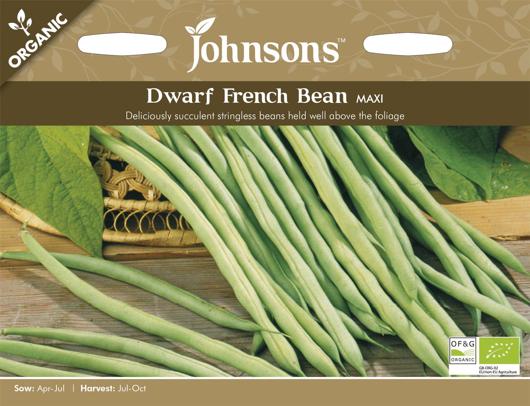 100 Seeds French Bean Vegetable Faraday Dwarf Unwins Seeds