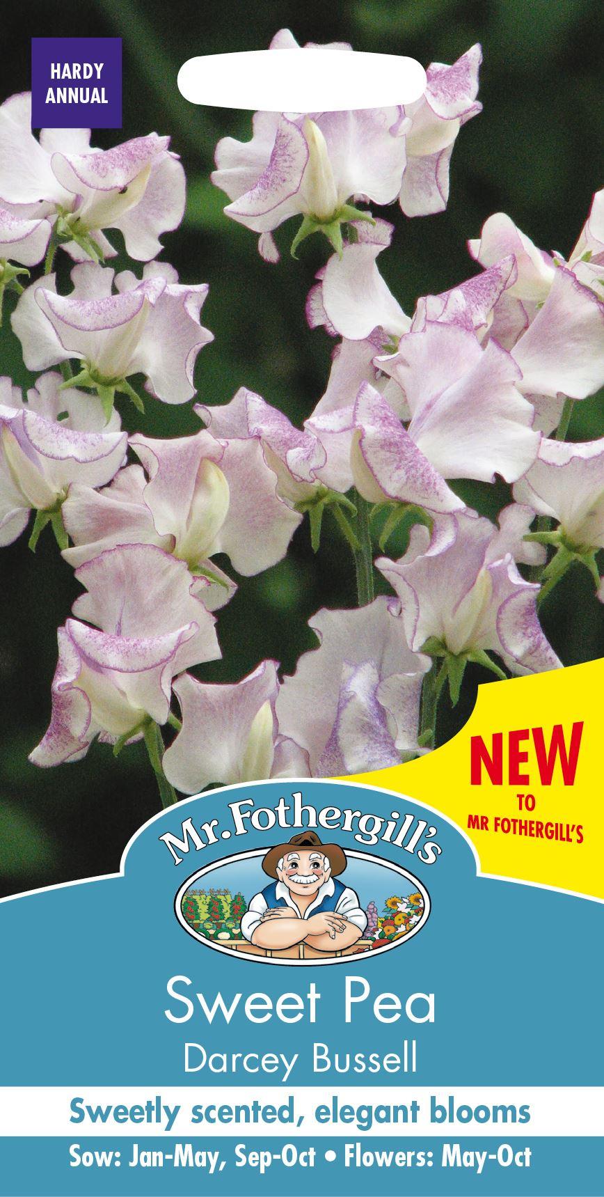 Cupani Sweet Pea Flower Pictorial Packet Mr Fothergills 20 Seeds
