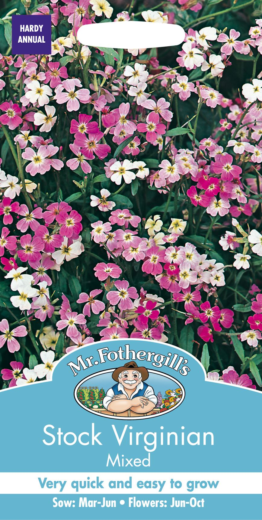 Mr Fothergills Pictorial Packet 150 Seeds Flower Stock Brompton Mixed