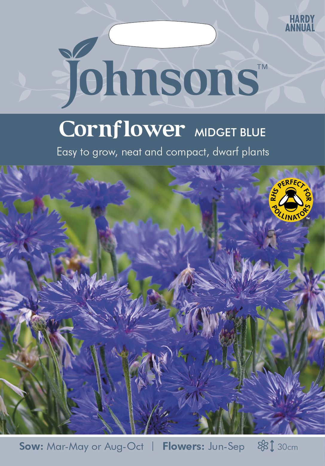Pictorial Packet Kings Seeds Classic Romantic Cornflower Flower
