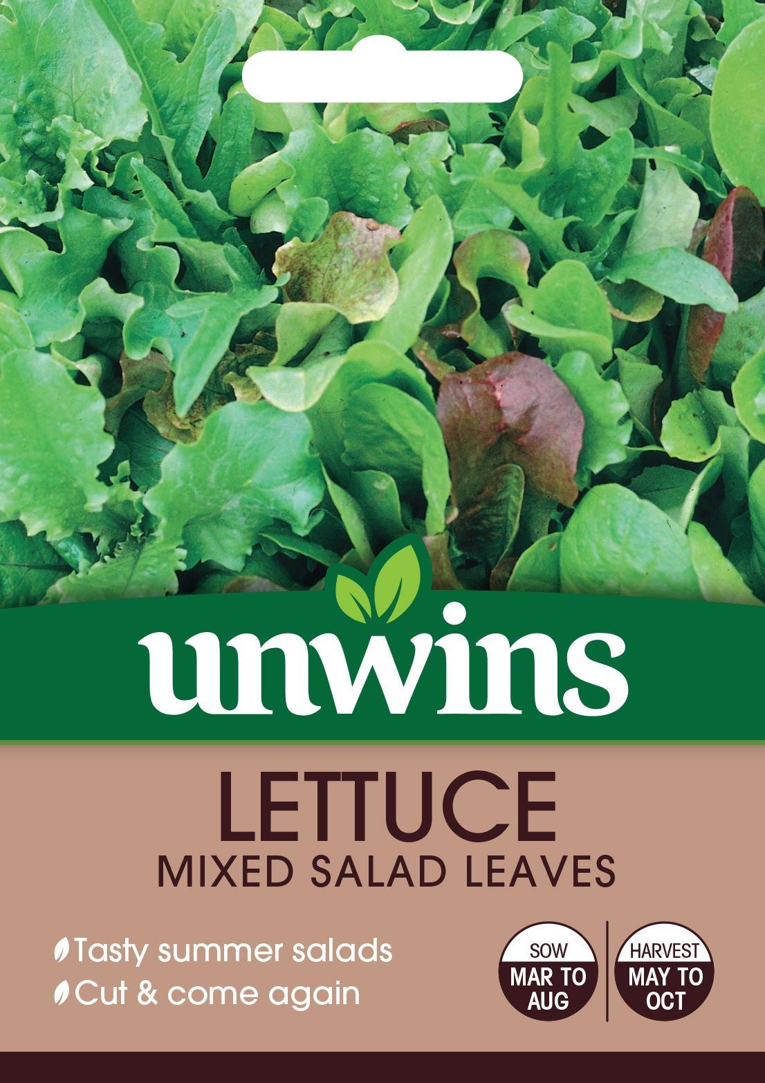 Pictorial Packet Mr Fothergills Mesclun Mixed Salad 500 Seeds