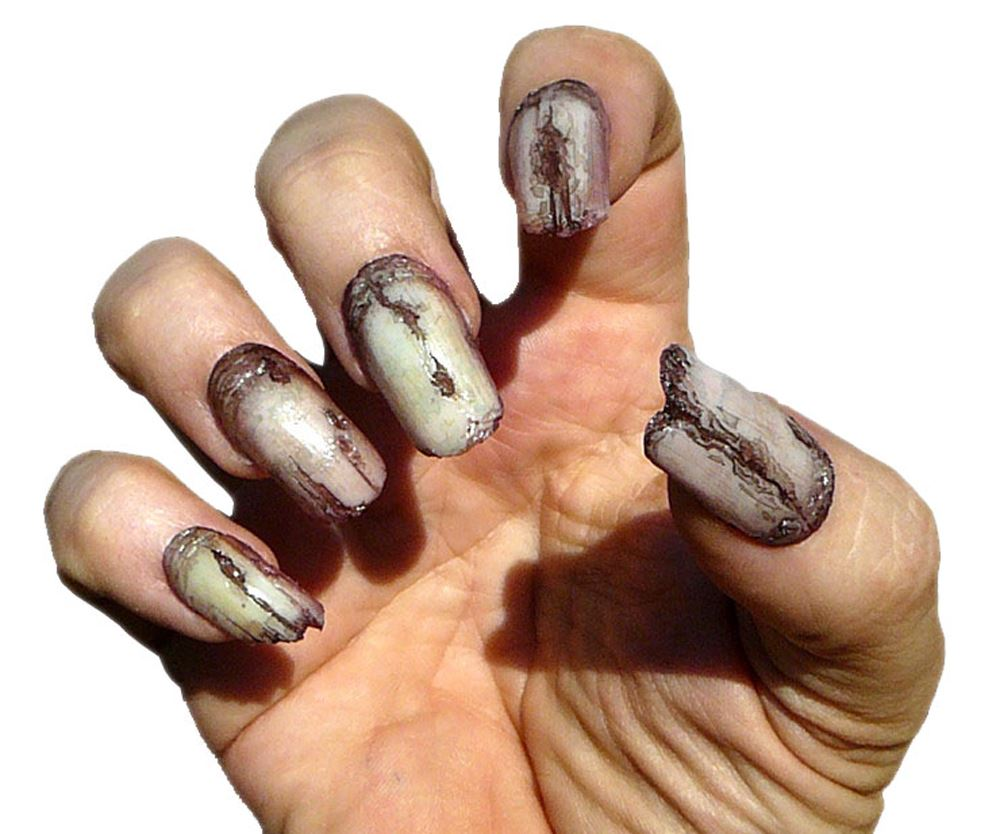 Creepy Claws Fake Claws Werewolf Gremlin Witch Vampire Nails Dental ...