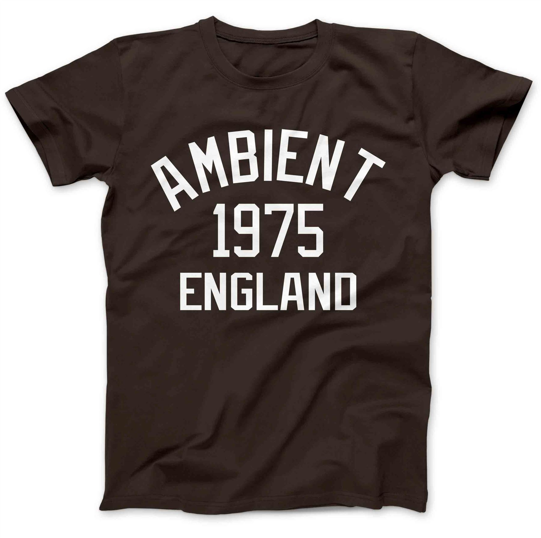 Ambient Music 1975 T-Shirt 100/% Premium Cotton Brian Eno The Orb Synthesiser