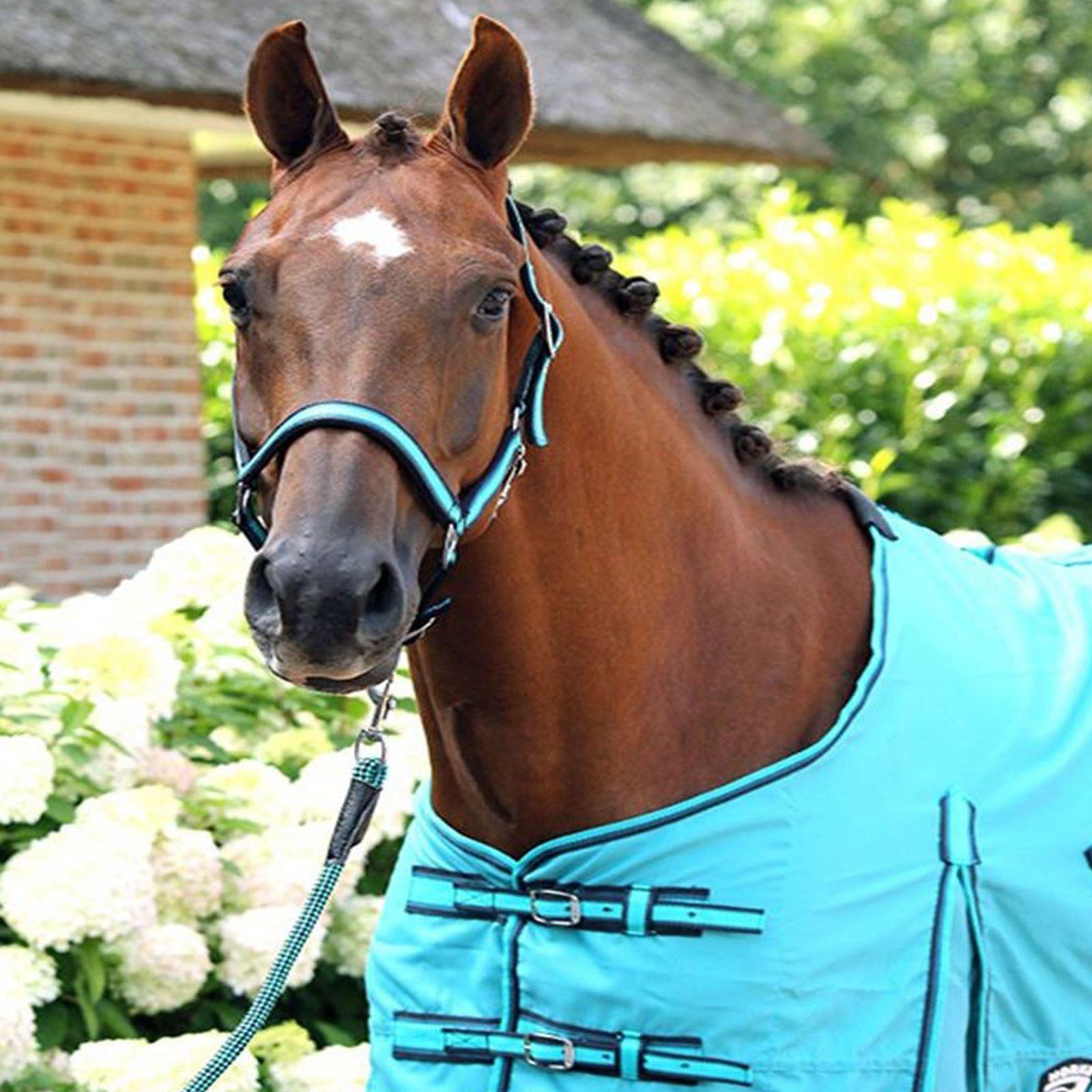 Horka Nylon Snake Headcollar Adjustable Leather Headpiece Noseband Horse Halter