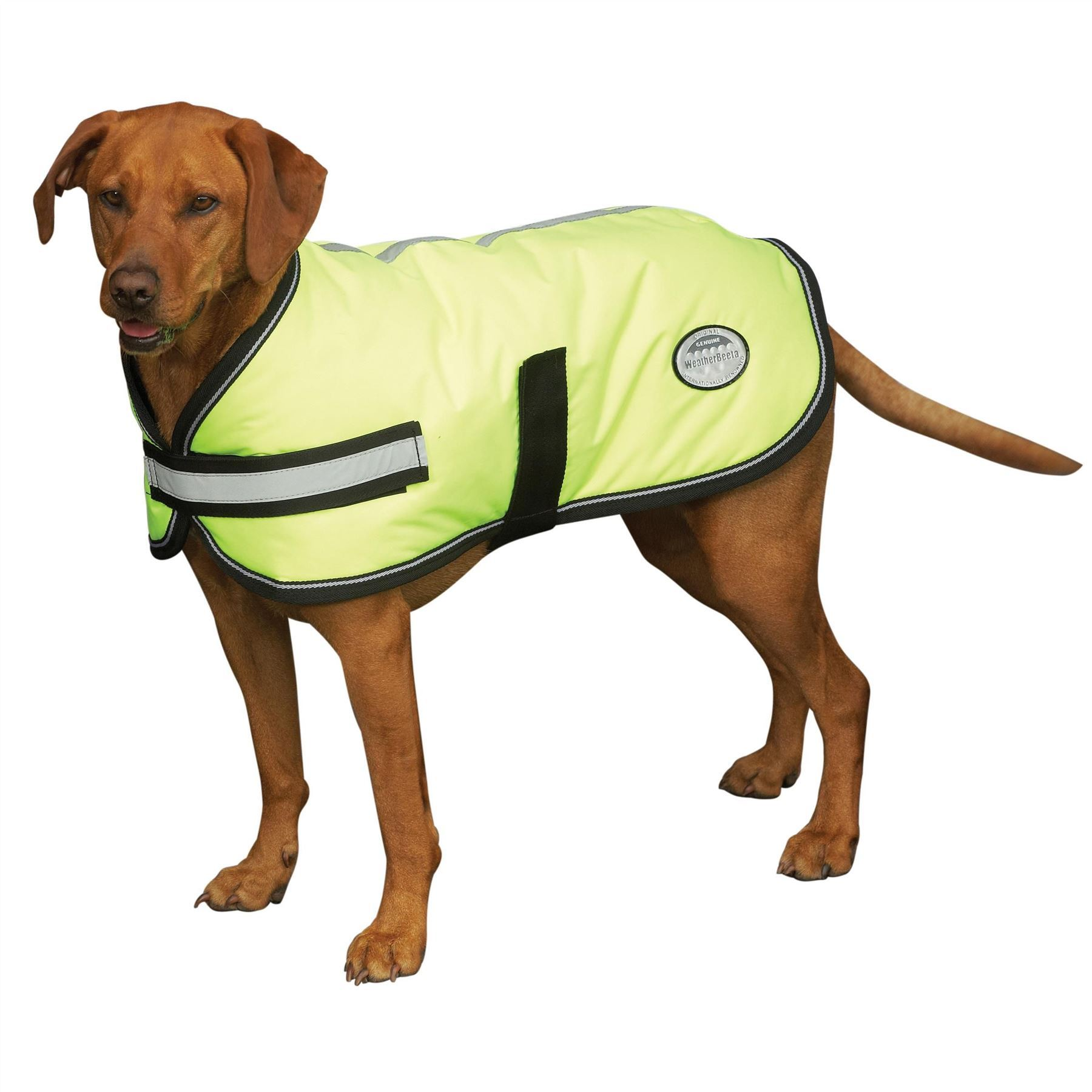 Weatherbeeta-Reflective-Hi-Vis-Parka-300D-Dernier-Dog-Coat-Waterproof-Breathable
