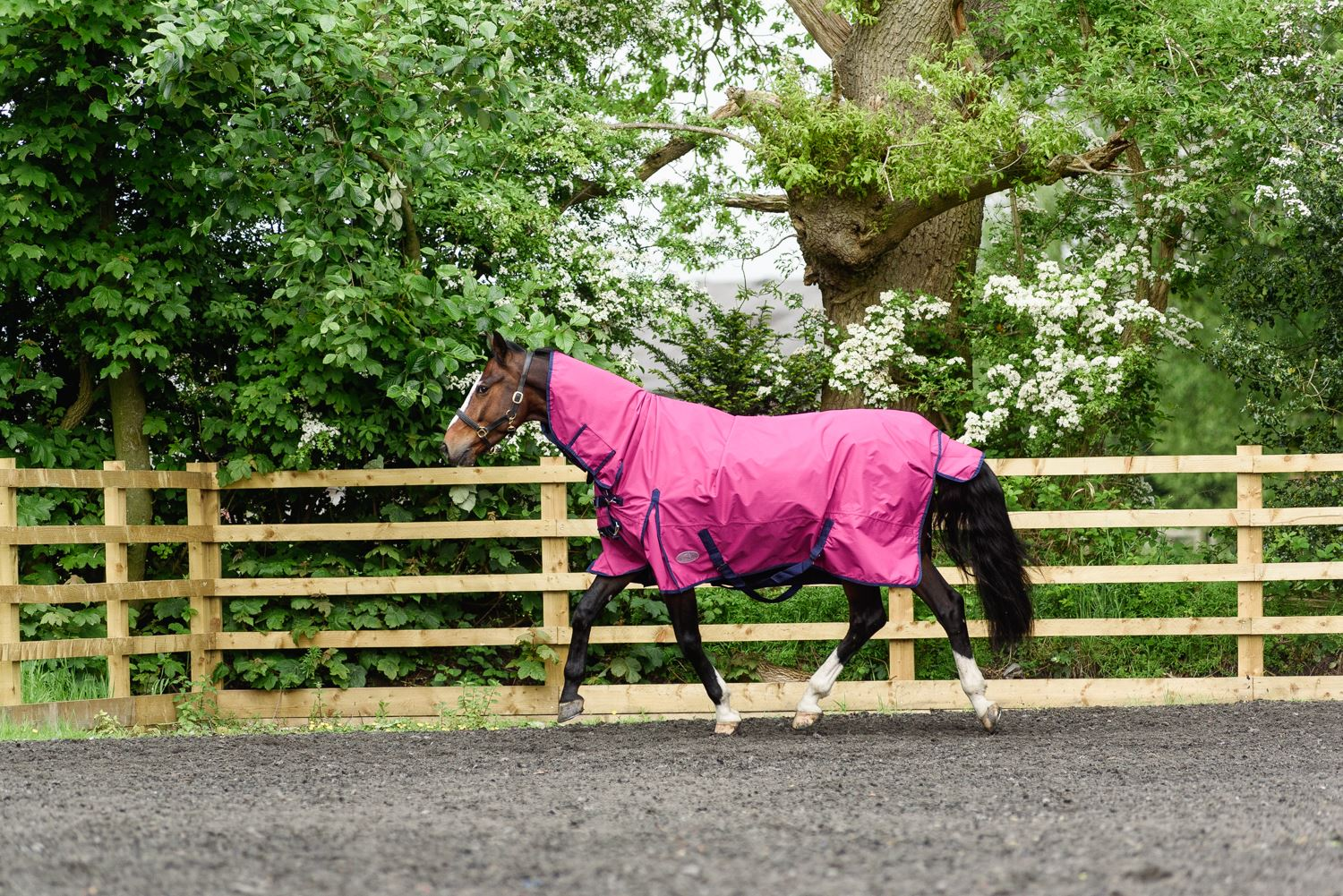 BOH-350g-Heavyweight-600D-Rip-Stop-Full-Fixed-Neck-Waterproof-Winter-Turnout-Rug thumbnail 40