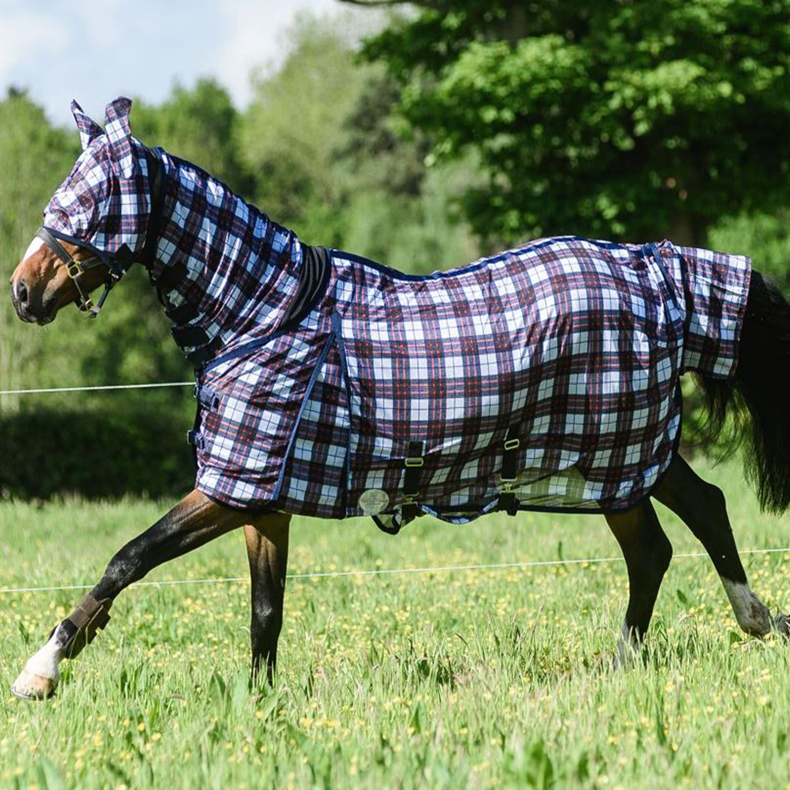 BOH-0g-Print-Full-Fixed-Combo-Neck-Breathable-Summer-Sheet-Mesh-Turnout-Fly-Rug thumbnail 38