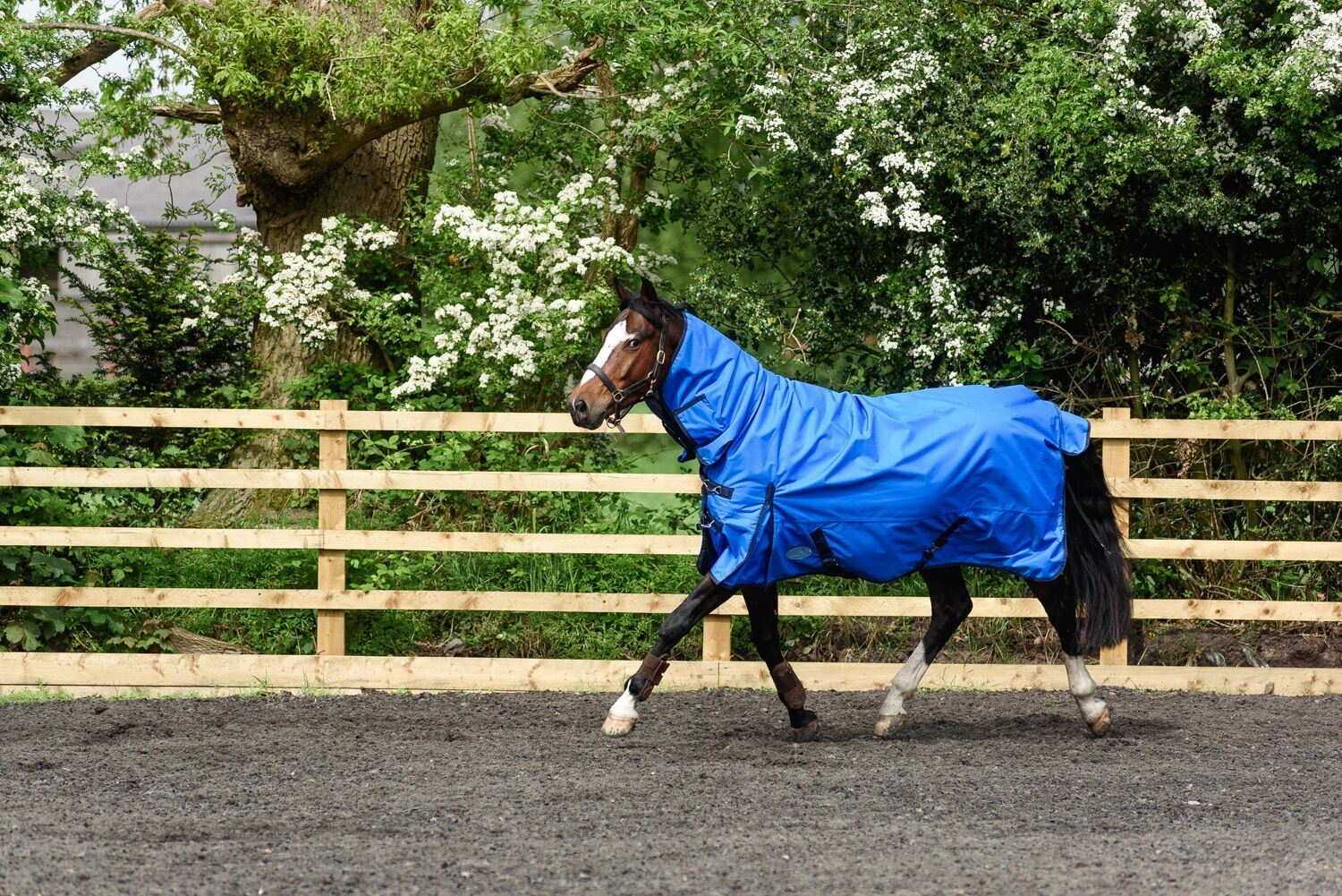 BOH-350g-Heavyweight-600D-Rip-Stop-Full-Fixed-Neck-Waterproof-Winter-Turnout-Rug thumbnail 13