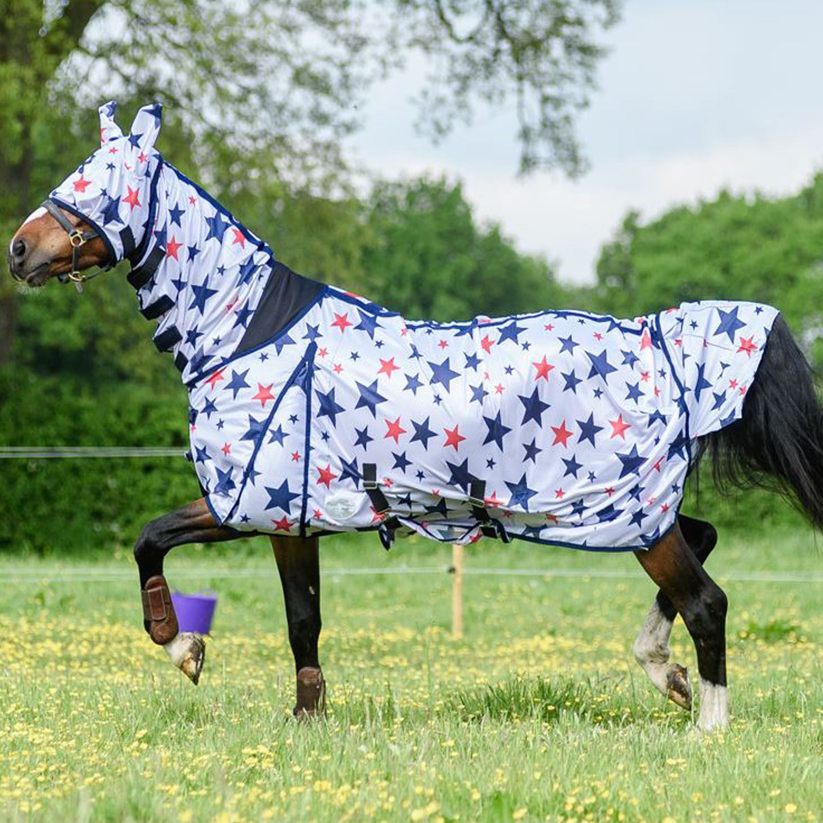 BOH-0g-Print-Full-Fixed-Combo-Neck-Breathable-Summer-Sheet-Mesh-Turnout-Fly-Rug thumbnail 45