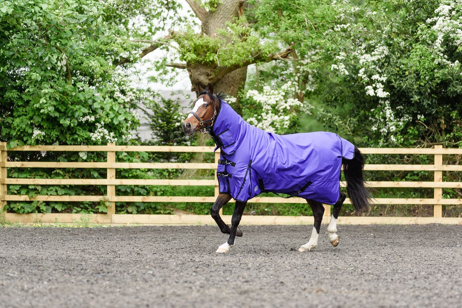 BOH-350g-Heavyweight-600D-Rip-Stop-Full-Fixed-Neck-Waterproof-Winter-Turnout-Rug thumbnail 33