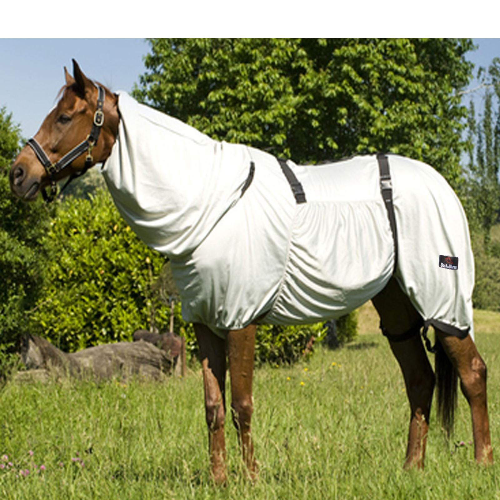 Sweet Itch UV Horse Pony Outdoor Belly Protection Full