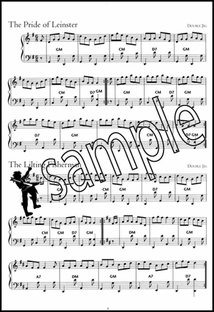 Details about The Irish Piano Accordion Sheet Music Book