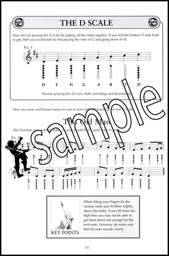 Details about A Complete Guide to Learning The Irish Tin Whistle Learn How  to Play Method