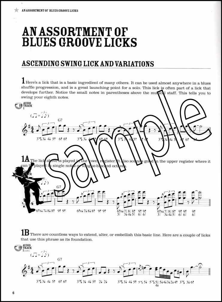 Criticism blues harmonica lick