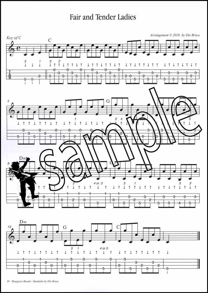 Details About Bluegrass Breaks For Mandolin Sheet Music Book With Audio 23 Solos 13 Kickoffs