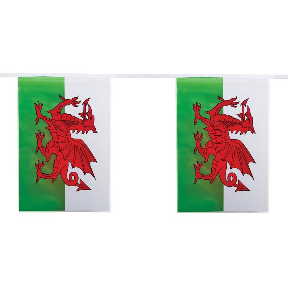 Large-5ft-x-3ft-Country-Flags-Buntings-Decoration-Teams-For-2019-Rugby-World-Cup miniatuur 77