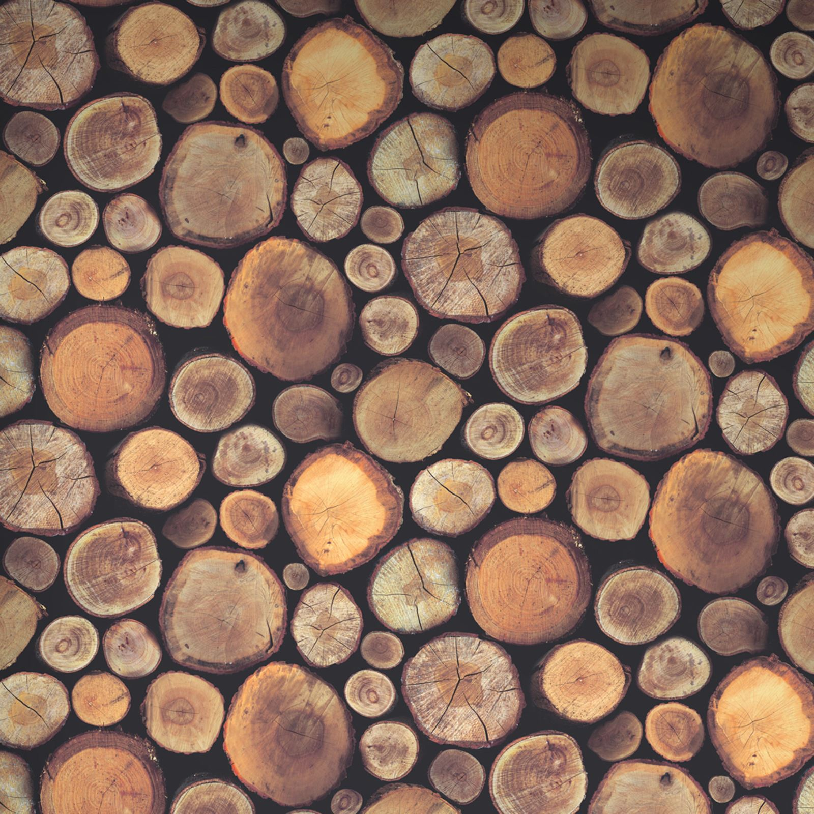 Details About Logs Wallpaper Realistic Wood Effect Feature Wall
