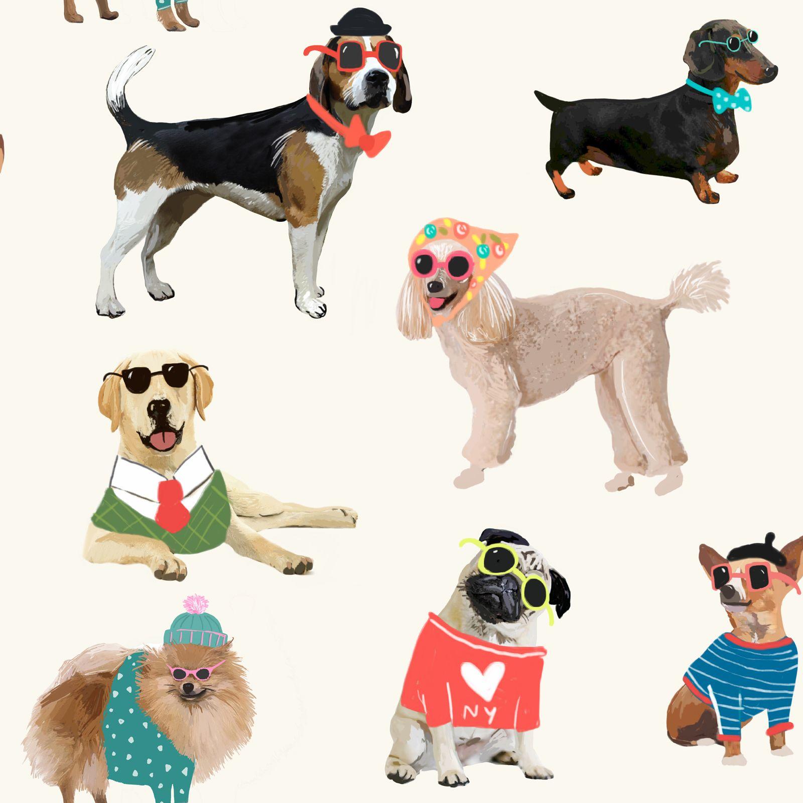 dog themed wallpaper animal love pug, puppy + various designs