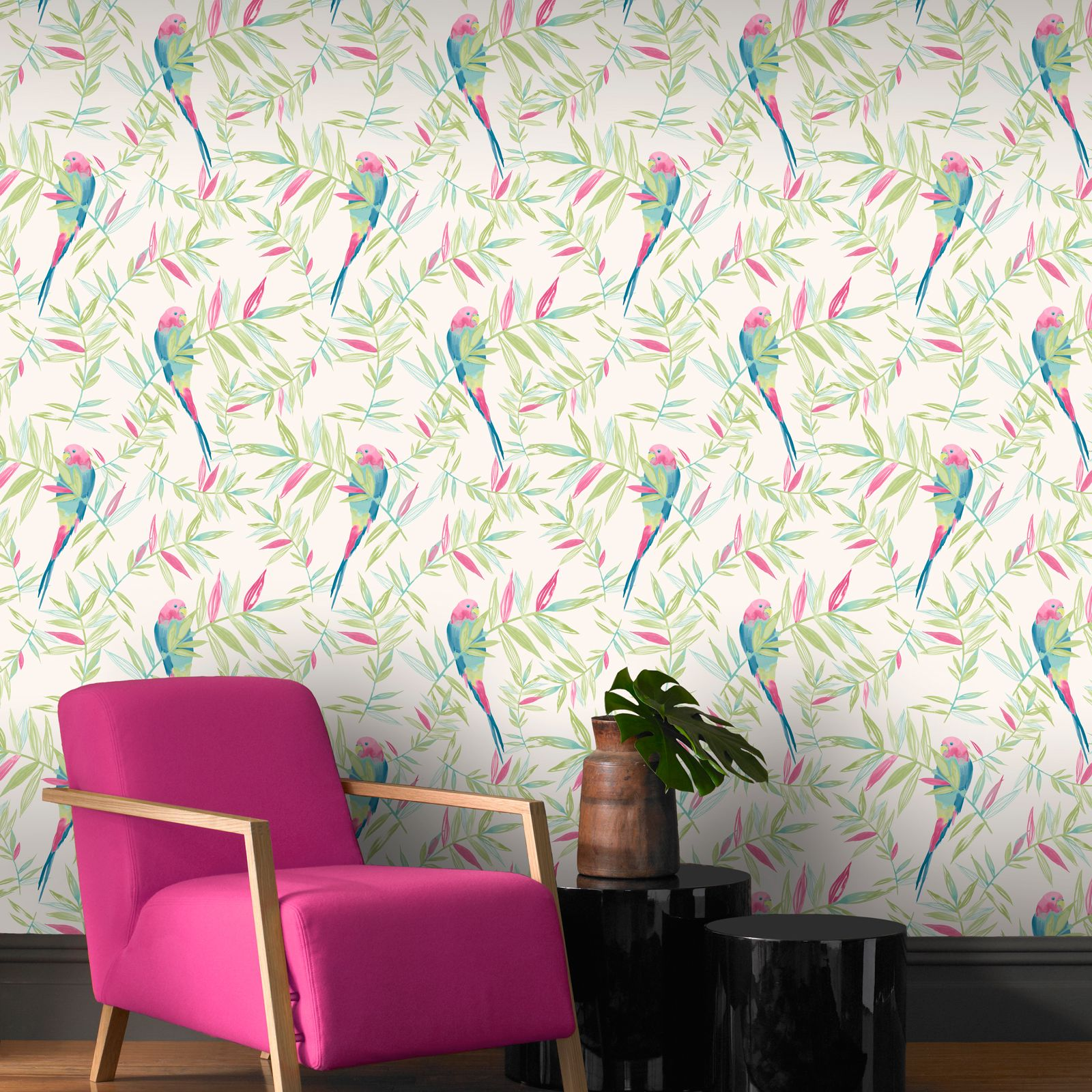 Beautiful exotic and tropical birds themed wallpapers for Wallpaper for feature wall living room
