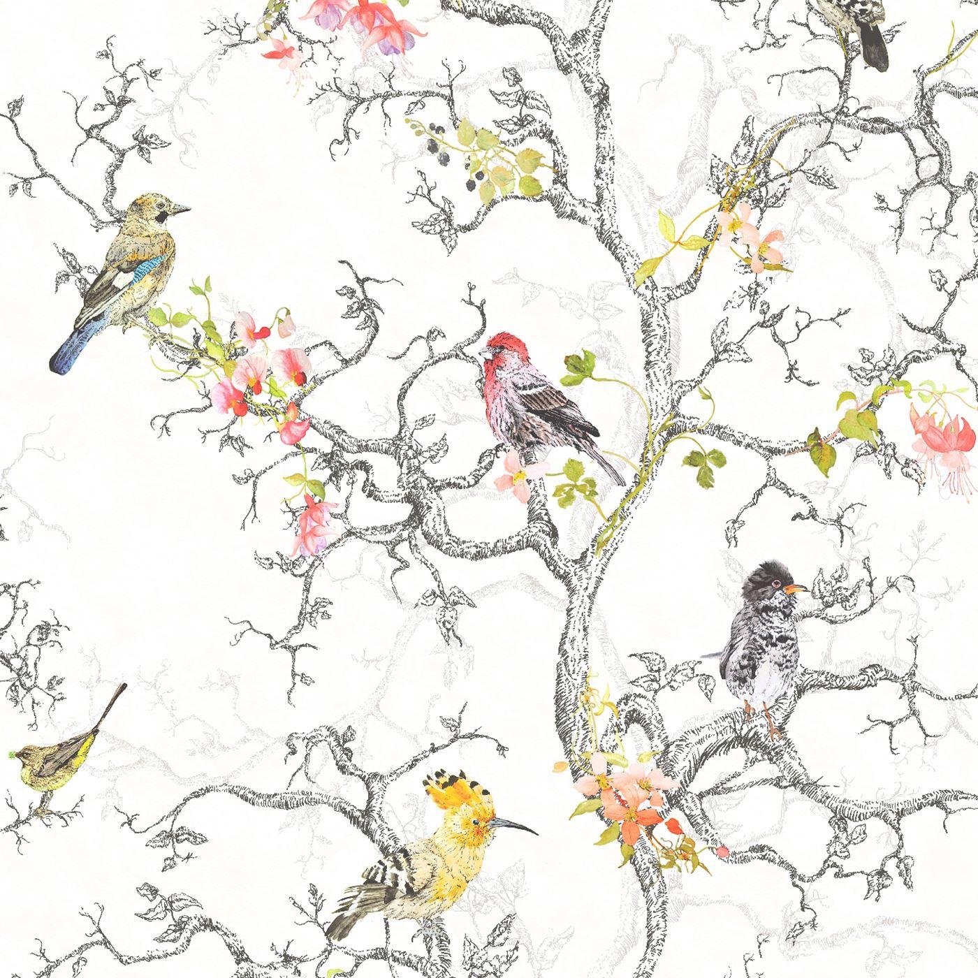 Ornithologie Oiseaux Papier Peint Rouleaux Blanc-Holden 98060