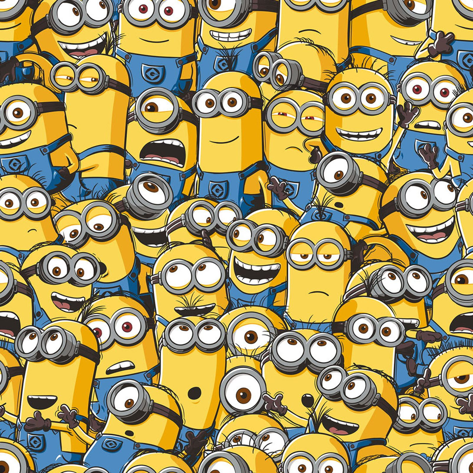 Despicable Me Minions Wallpaper Rolls 10m Official | eBay