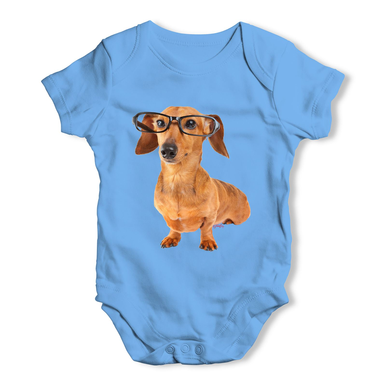 Twisted Envy Doxie Dachshund Hipster Dog Baby Uni Funny Baby Grow