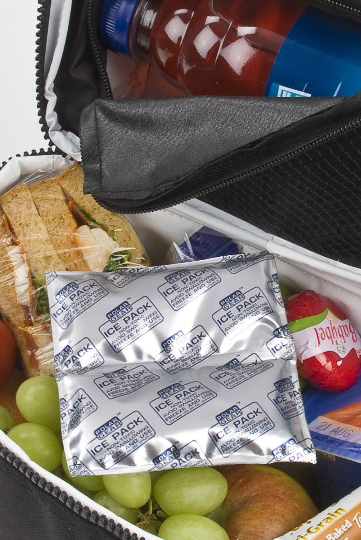 Polar Gear Mini Ice Pack Freezer Gel Picnic Lunch Box Cooler Bag 3 Pack & Polar Gear Mini Ice Pack Freezer Gel Picnic Lunch Box Cooler Bag 3 ... Aboutintivar.Com
