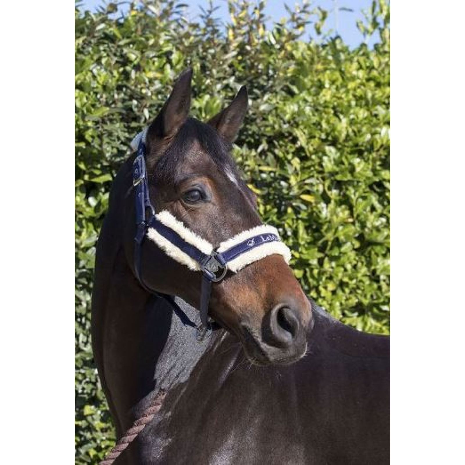SALE Mark Todd Unisex Soft Fleece Beanie Hat Great For Stable Yard!