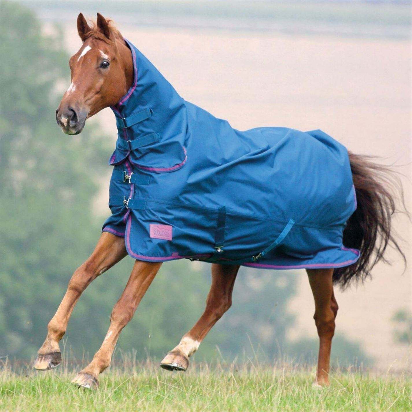 Shires Tempest Combo Original 50gm Combo Tempest Turnout Horse Rug Waterproof df7b0d