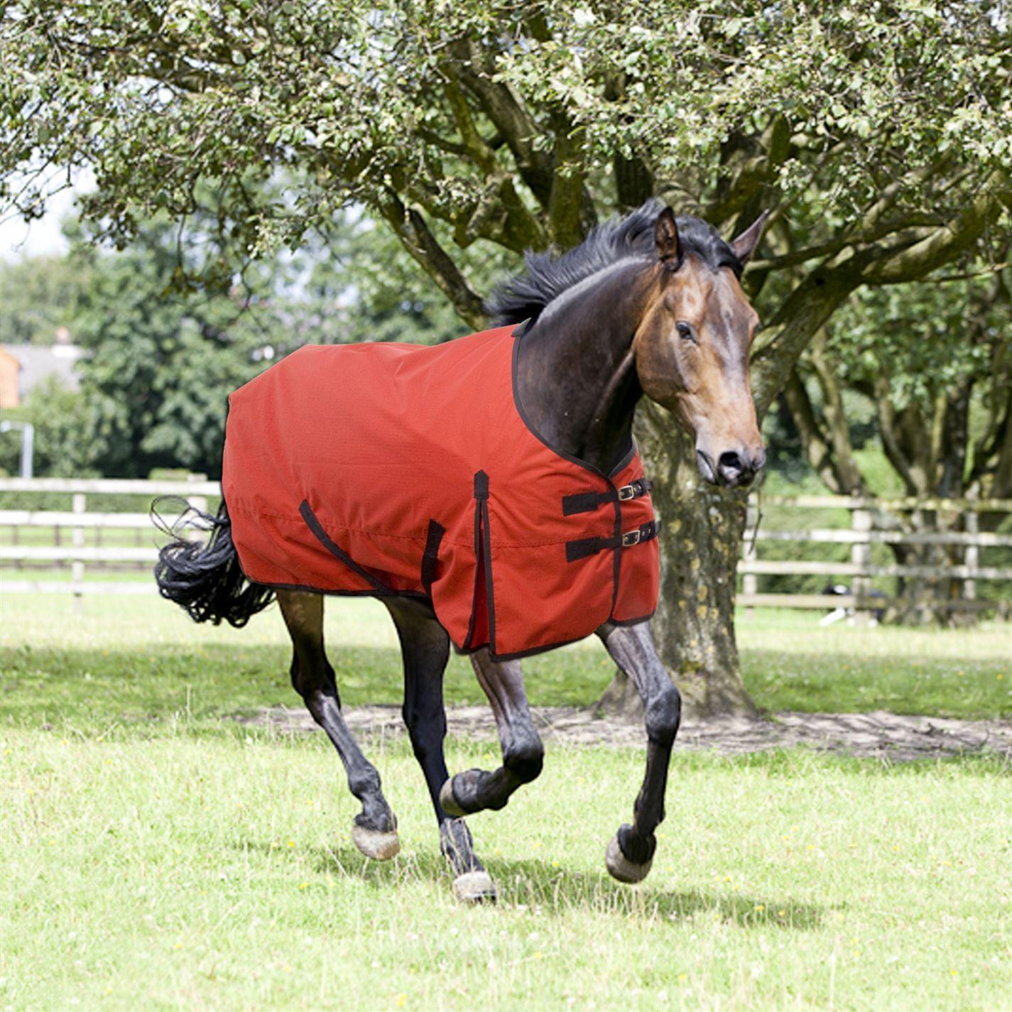 Requisite Classic 600 Std Lite Turnout Unisex Horse Rug Water Repellent Repellent Water cf069a