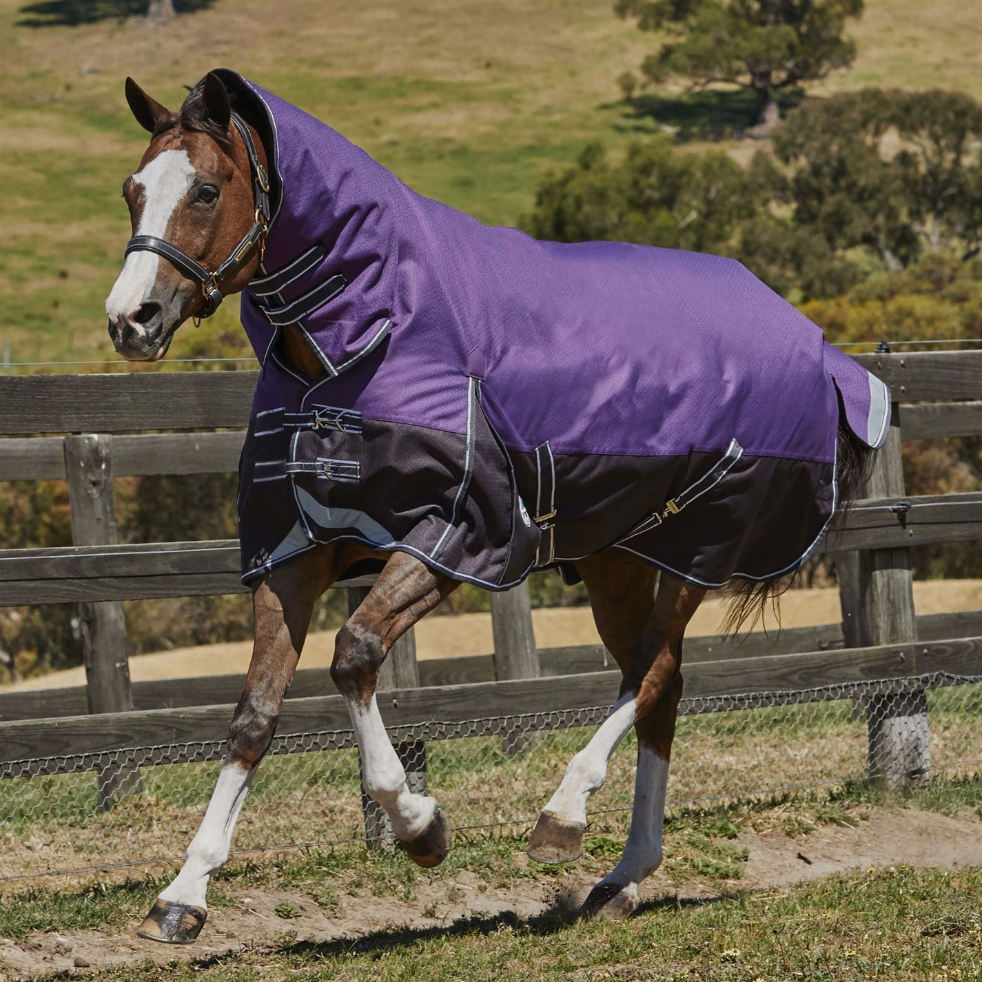 Weatherbeeta ComFiTec Plus Dyn Combo Med Lite Horse Rugs Rugs Horse Breathable Equestrian a2f1a0