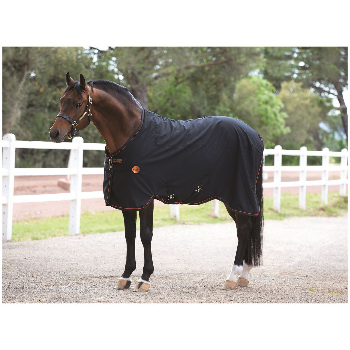 Rambo Unisex Ionic Stable Rug Sheet Horse Rug Stable Breathable Print Printed 14d36a