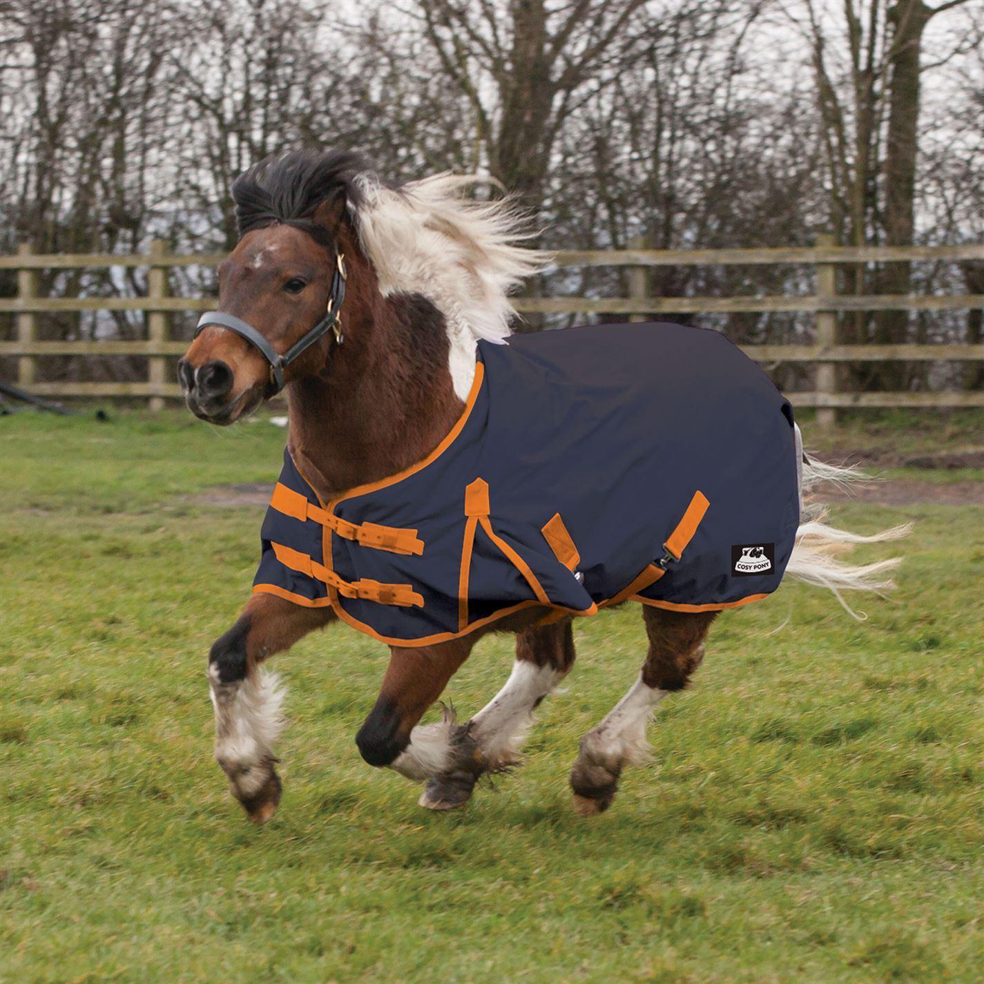 Requisite Cavalier Standard Medium Pony Turnout Turnout Pony Unisex Horse Rug Water Repellent c75f7c