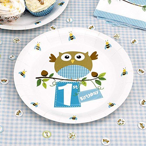 Owl Baby Shower Supplies: Little Owl Blue Baby Shower Birthday Party Tableware Boys