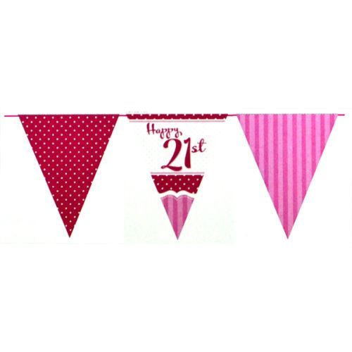 Pink Age 21 Female Happy 21st Birthday Banner Confetti ...
