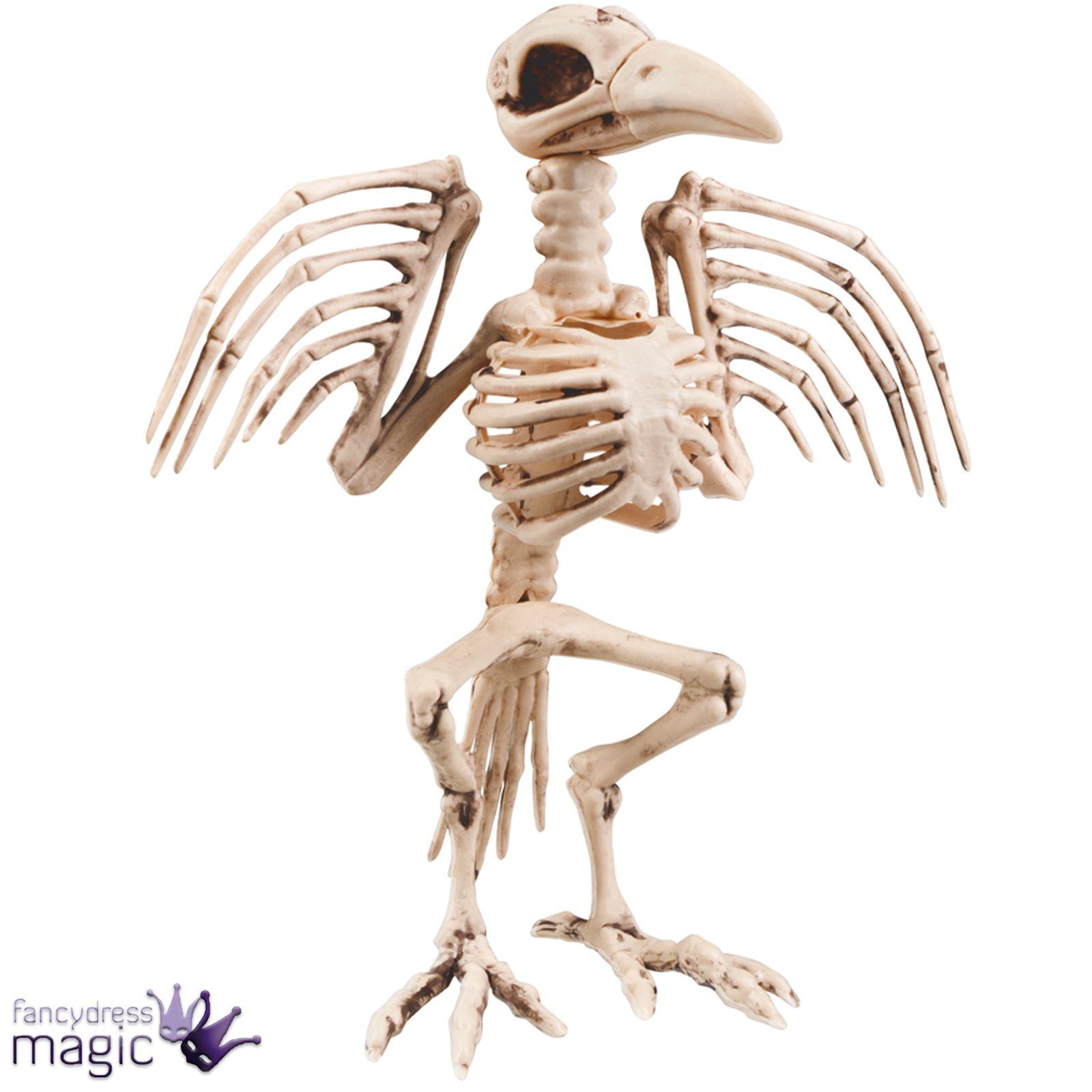 Halloween Horror Scary Large Bone Skeleton Raven Crow Bird Party ...