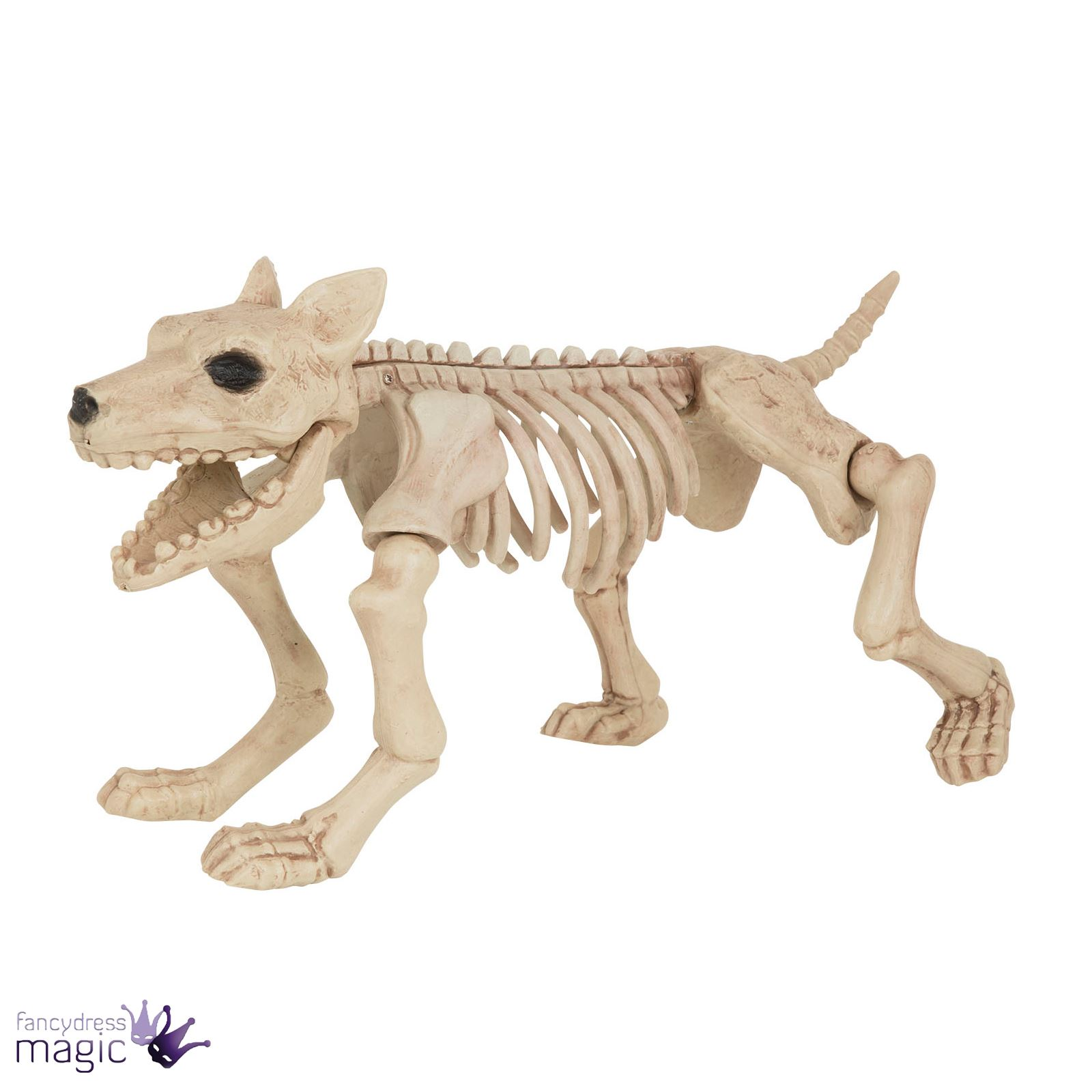 halloween dog cat rat bird skeleton decoration animal
