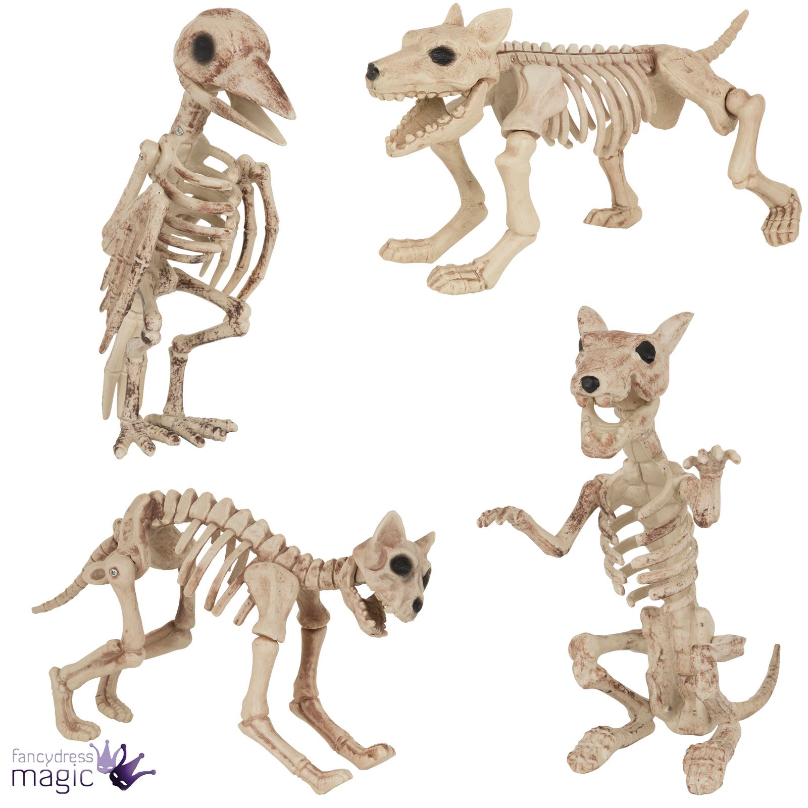 Monster High Ebay >> Halloween Dog Cat Rat Bird Skeleton Decoration Animal Bones Prop Shop Display | eBay