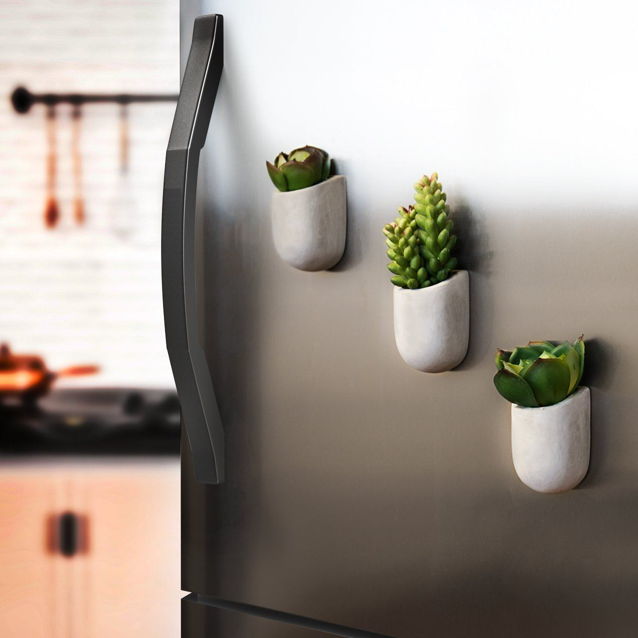 Cemento Magnetica Vaso Fioriera Interno Cucina Piante Grasse Cactus ...