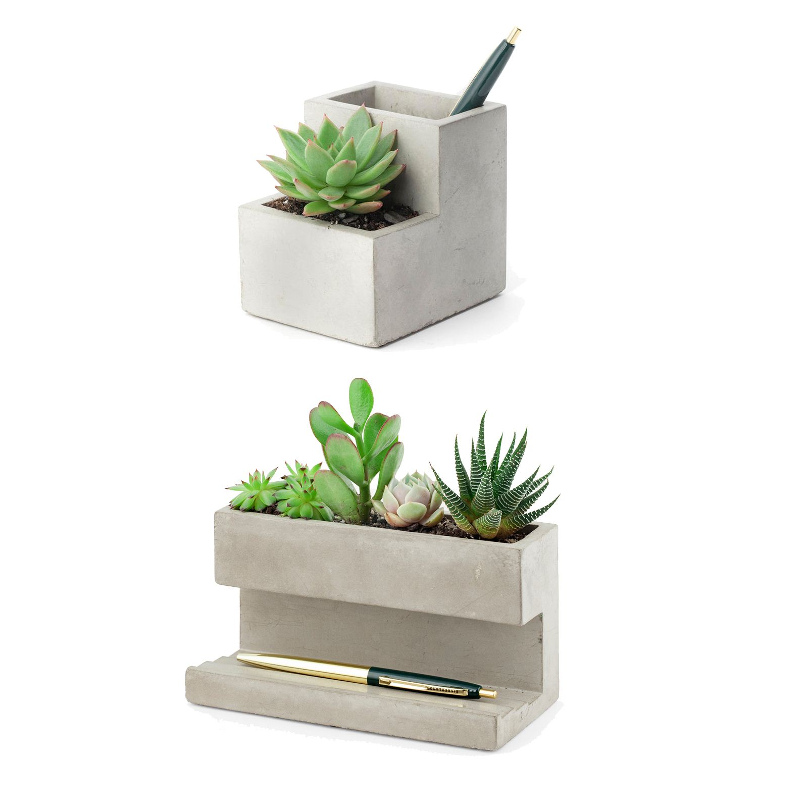 Kikkerland Concrete Planter and Pen Holder Green Plant Desk ...